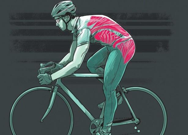 Мышцы кора велосипедиста